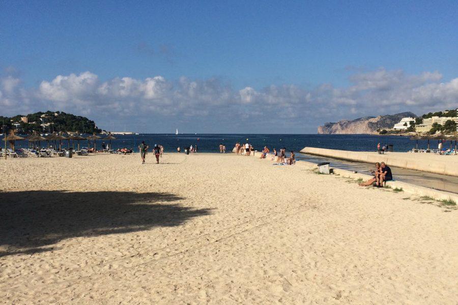 Foto vom Strand beim Urlaub in Santa Ponsa