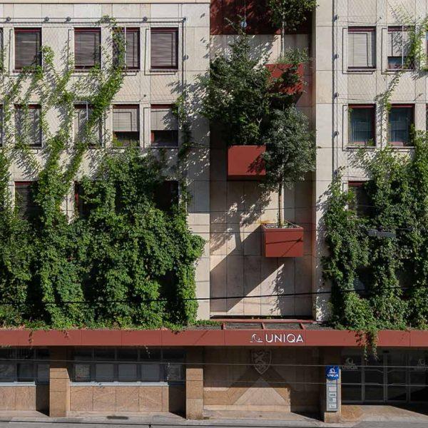 UNIQA LD Steiermark - Fassadenbegrünung und PV-Anlage